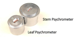 Psychrometer Chambers for Leaf and Stem